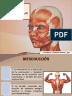 CLASE 10 - FISIOLOGÍA