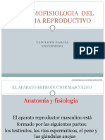ANATOMOFISIOLOGIA  DEL SISTEMA REPRODUCTIVO