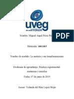 Perez_Miguel_sustanciasymezclas.docx