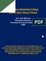 CADENA RESPIRATORIA-ESPECIES REACTIVAS.pptx