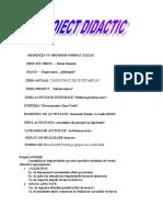 proiect_didactic_petrut_daniela_1.doc