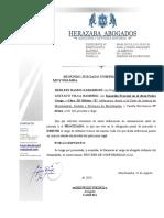 VILA RAMIREZ GUSTAVO- DIMISION DE PATROCINIO