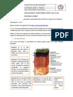 Guía didáctica#5 naturales cuarto periodo 4°