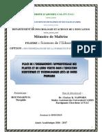 MEMOIRE MAÎTRISE SCIENCE DE L'EDUCATION THEO FINAL
