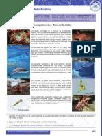 A-Osmorregulación-en-el-medio-acuático