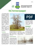 Die_Schwarzpappel.pdf