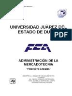 """Proyecto de Mercadotecnia """"Disquera Atzimba"""""""