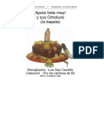 Apola-Irete-pdf-1.pdf