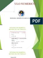 Clase 7  Numerico.pdf