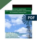 Tecnologias adaptadas ao semiárido_v1_INSA.pdf