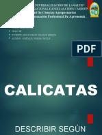 EDAFOLOGIA CLASIFICACION