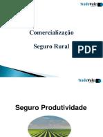 Apresentação seguro agro .pdf