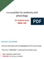 P-anatomy