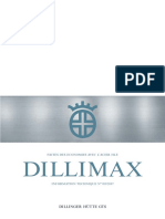 dillimax_information_technique_2007