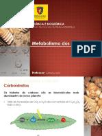 Aula 6 - Metabolismo dos Glicídeos
