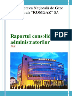 SNG_20190425143523_Raportul-administratorilor-2018