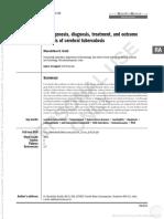 msm.pdf
