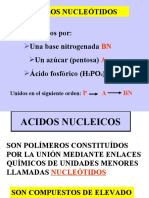 ACIDOS_NUCLEICOS ii.ppt
