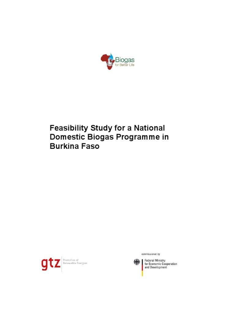 feasibility study in entrepreneurship pdf