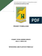 proiect-pomologie-sitaru-andreea-mariuta