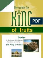 DurianFruitProperties
