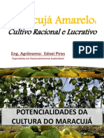 aula02-culturadomaracuj-150724131718-lva1-app6891