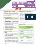El-Virus-para-Quinto-Grado-de-Secundaria