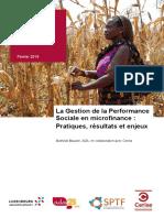 etude-sur-la-gestion-de-la-performance-sociale-en-microfinance.pdf