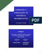 14_ expressao_e_purificacao_proteinas_recombinantes