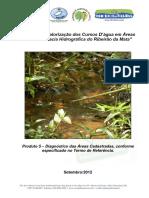 Relatorio_Tecnico_Diagnosticos_Ambientais Ribeirao da Mata Bacia_Velhas.pdf