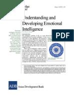 Understanding Developing Emotional Intelligence