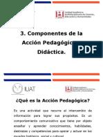 Componentes de la acción pedagógica y didáctica