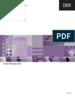 IBM Webshpere DataStage 8.x parallel jobs guide