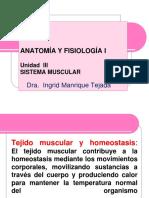 sistema muscular .pdf