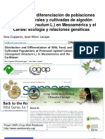 Coppens-Lacape-Algodon-seminario
