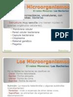 09. Microorganismos