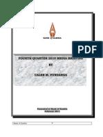 BoZ Quarterly Brief - Speech (Q4 2010)