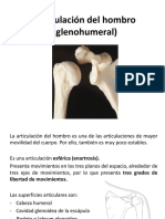 Articulación glenohumeral Lippert v2.pdf