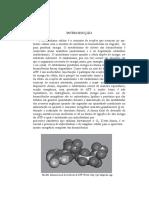 Apostila bioquimica_aula_12