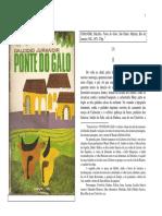 Ponte do Galo.pdf.pdf