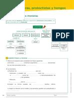BYG.1ªev.tema2_.pdf