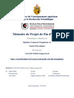 Etudes des caractéristiques du gazole et du pétrole à des fins énergétiques.pdf