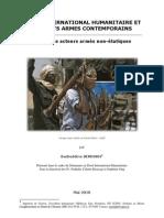 Droit International Humanitaire et acteurs armés non étatiques - International Humanitarian Law and armed non state actors (Badreddine Serrokh)