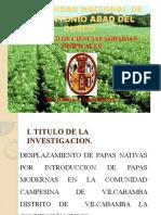Tesis de la Papa Nativa (Vilcabamba)
