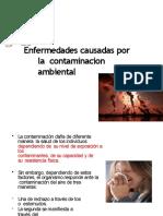 enfermedadescausadasporlacontaminacindelaire-130929171818-phpapp01-converted