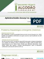 1 - Aphelenchoides besseyi no algodoeiro (1)
