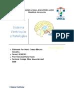 Investigacion Neurociencia
