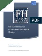 Los diversos recursos procesales en el Estado de Hidalgo