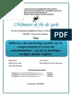 Mémoire Final