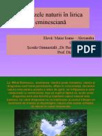Dor de Eminescu Nivel I Critică Literară Ipostazele Naturii În Lirica Eminesciană Maier Ioana Alexandra